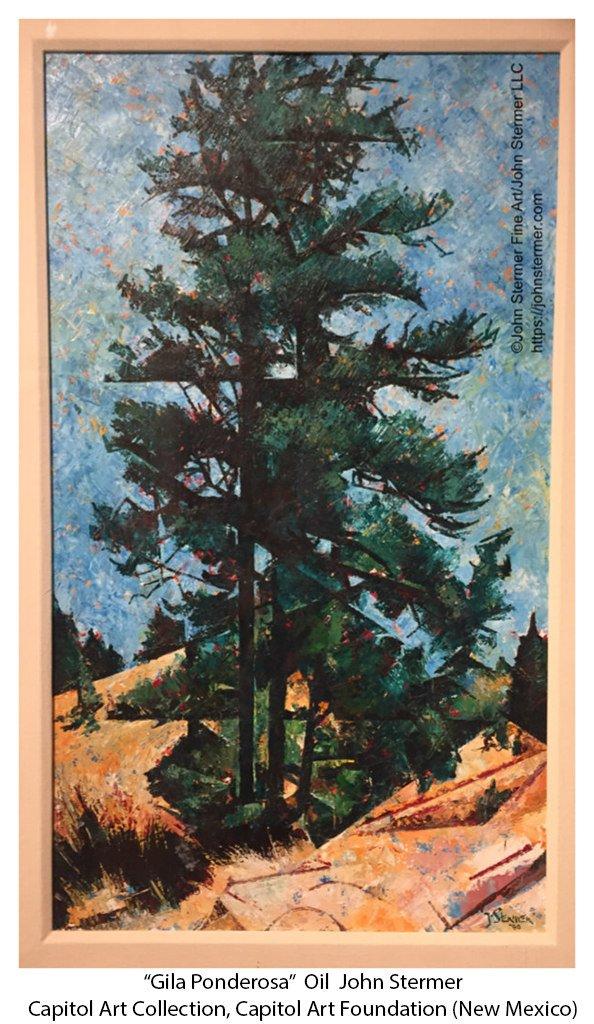Trees As Subject: Gila Ponderosa